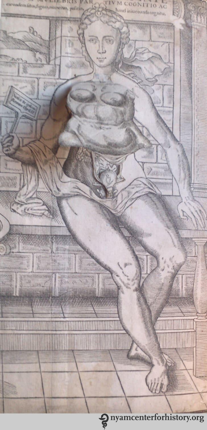 Flap anatomy from Thomas Geminus's Compendiosa