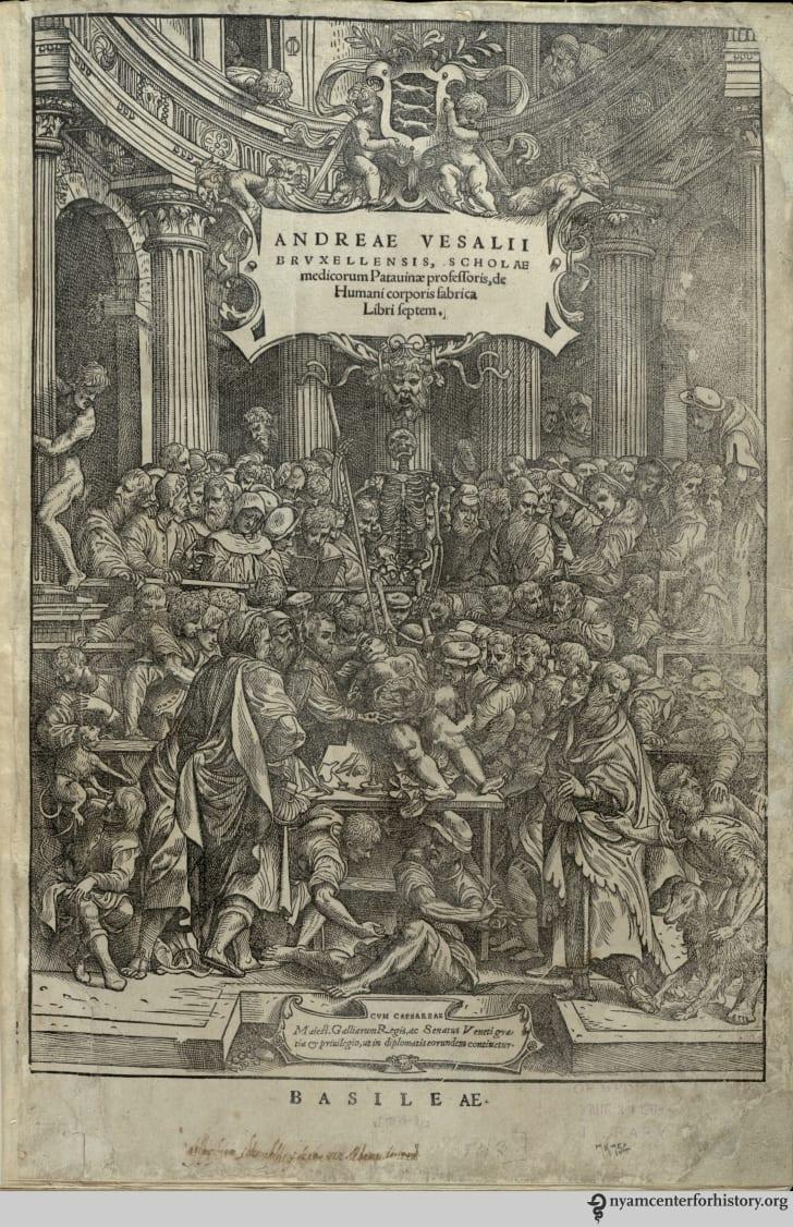 Andreas Vesalius's Fabrica