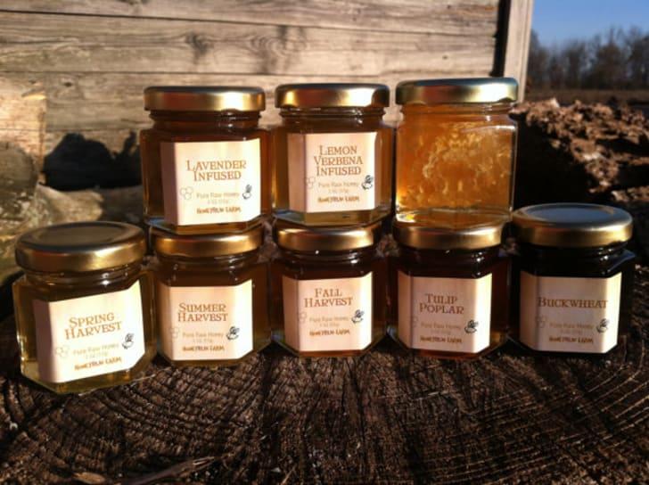 Raw Honey Sampler