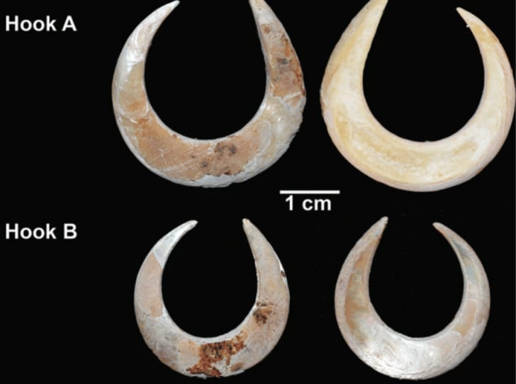 Ancient fish hooks discovered in Indonesia by archaeologists from Australian National University