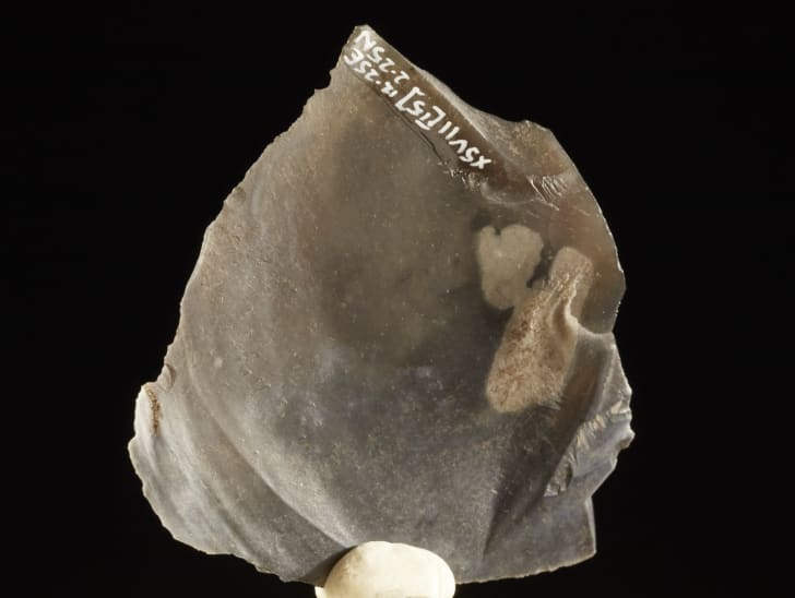 An 8000-year-old piece of flint, discovered by archaeologists while expanding the London Underground.