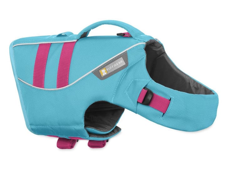 Life vest for dogs.