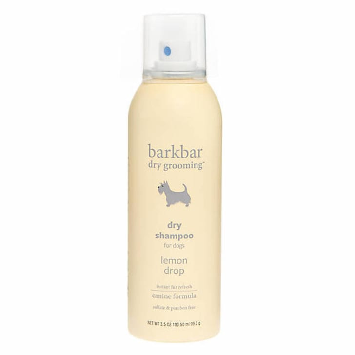 Dry shampoo for dogs.