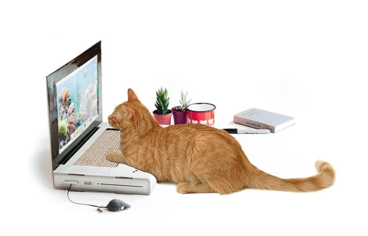 Laptop Cat Scratching Pad by Uncommon Goods