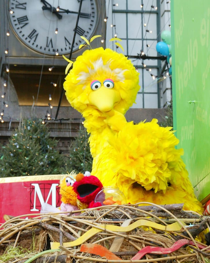 Big Bird and Elmo at the Macy's Thanksgiving Day Parade.