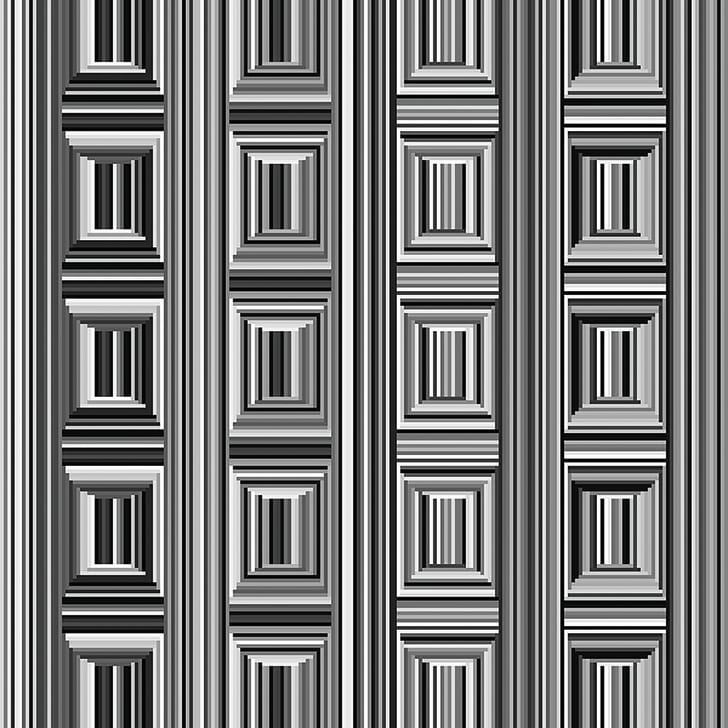 coffer illusion by Anthony Norcia, Stanford University