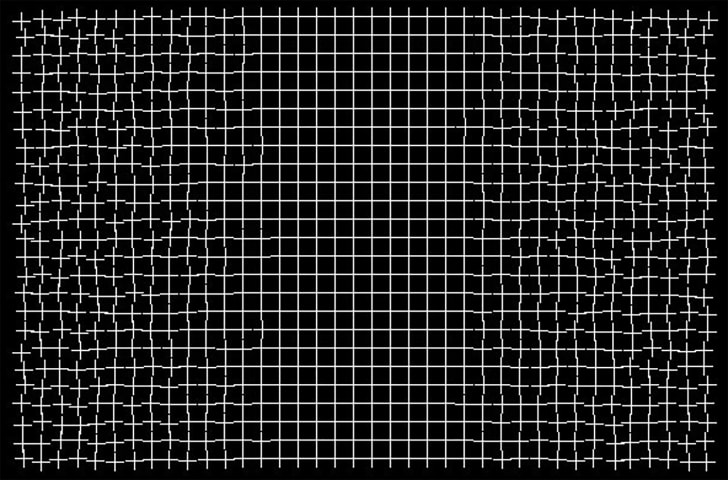healing grid illusion by Ryota Kanai