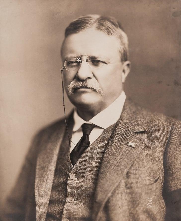 Portrait of Theodore Roosevelt, circa 1918.