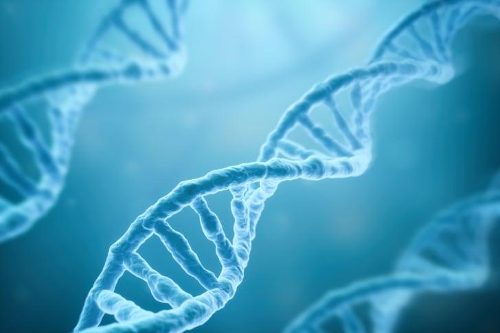 Double helix of DNA