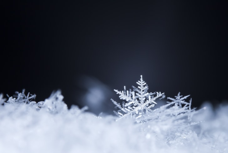 A snowflake in snow on a dark background.