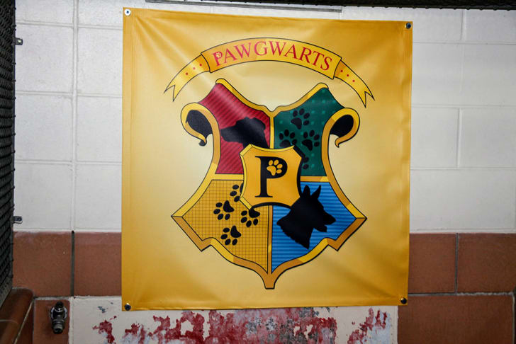 """A banner labelled """"Pawgwarts"""" shows the Hogwarts houses' arms with dog silhouettes on them."""
