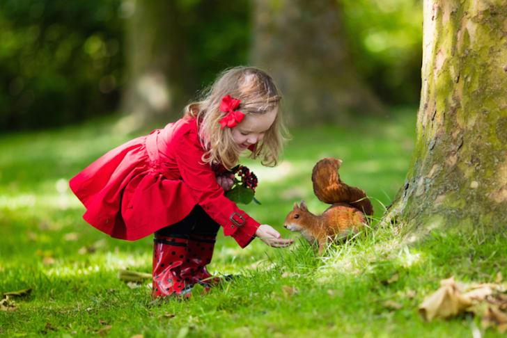 Photo of a little girl feeding a squirrel