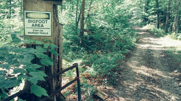 Woodsy trails marked with a