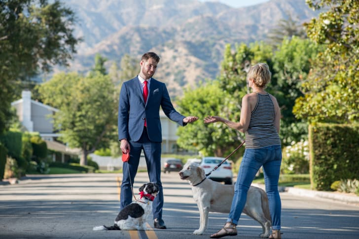 A businessman walking his dog and talking to another dog owner.