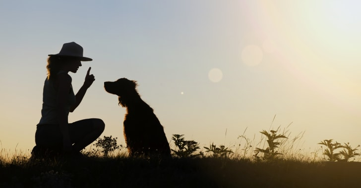 A woman holding up her finger to a dog.