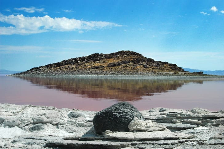 Cub Island on the Great Salt Lake