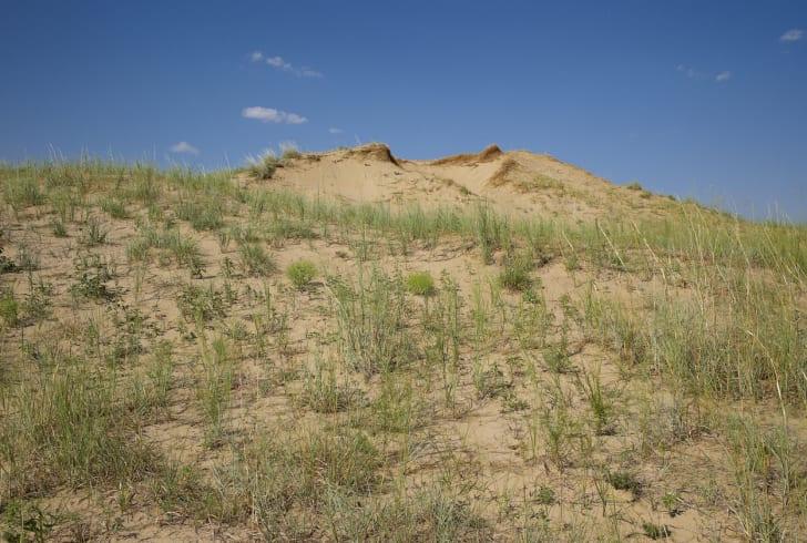 Sand Hills in Kansas.