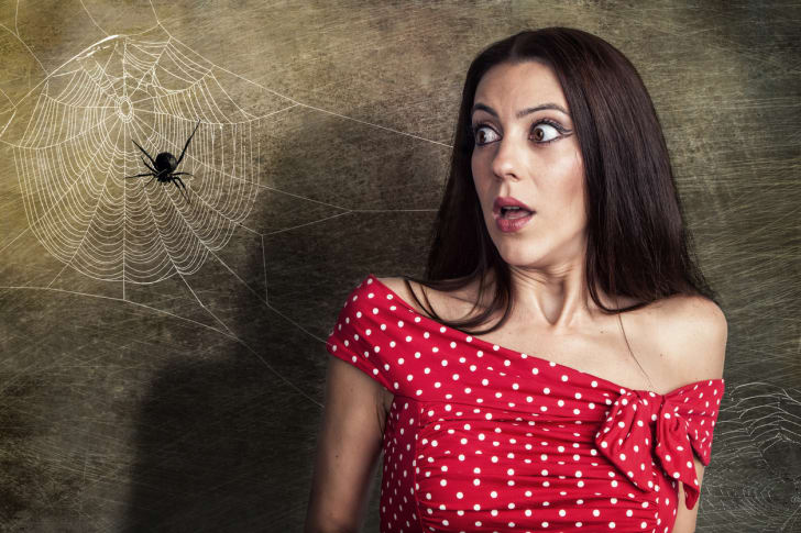 A brown-haired woman in a red polka dot blouse standing with a frightened expression next to a spider web.