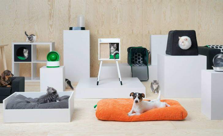 An assortment of IKEA pet furniture
