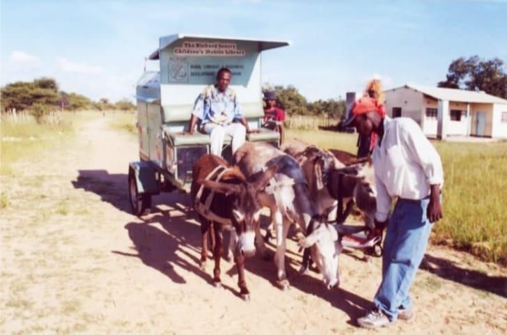 Donkeys pulling a cart