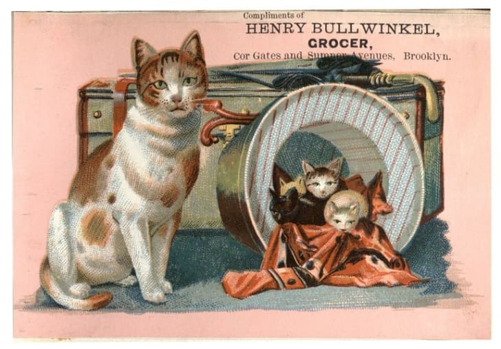 Trade card of Henry Bullwinkel featuring illustration of a cat with a litter of kittens next to a set of luggage.