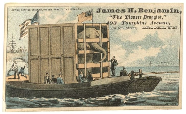 Trade card for James H. Benjamin, with caption: 'Jumbo Leaving England, on the Way to the Steamer.'