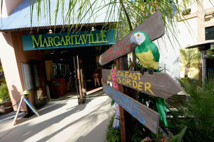 A parrot at Margaritaville welcomes guests