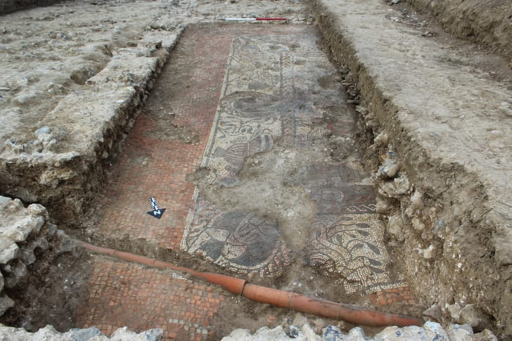 A Roman mosaic thought to date from 380 CE, unearthed by citizen archaeologists in Boxford England.