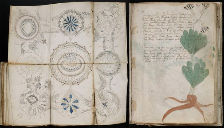 A fold-out from the Voynich manuscript shows circular, decorative illustrations.
