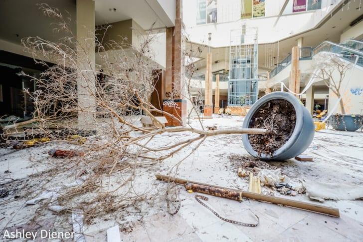 Interior of dead mall.