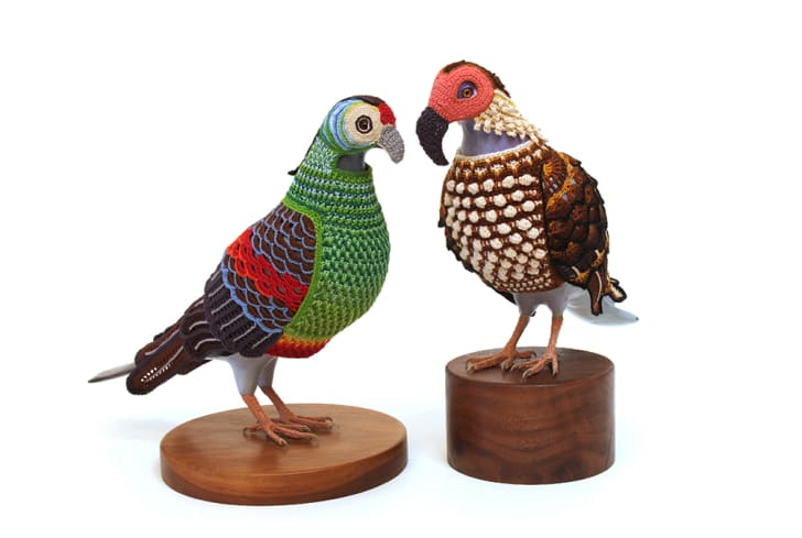 Two taxidermied birds covered by colorful crocheted fabric are placed beak-to-beak.