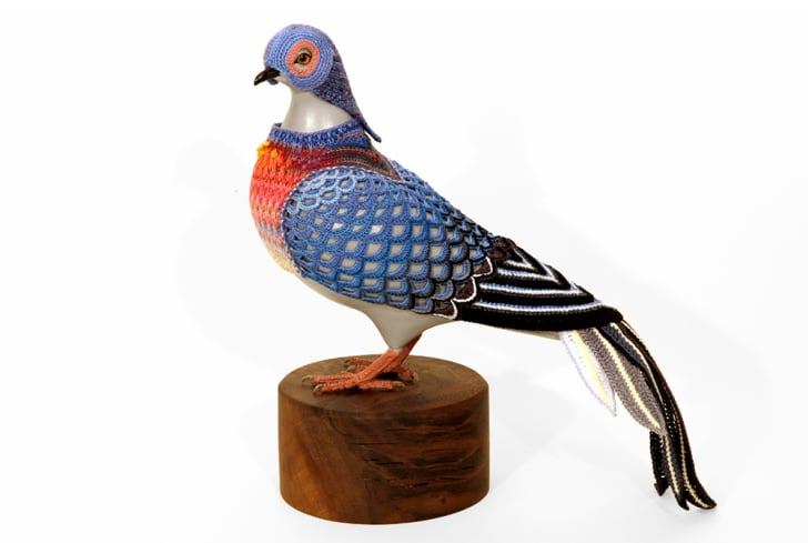 A blue and orange crocheted costume makes an urban pigeon look like a passenger pigeon.
