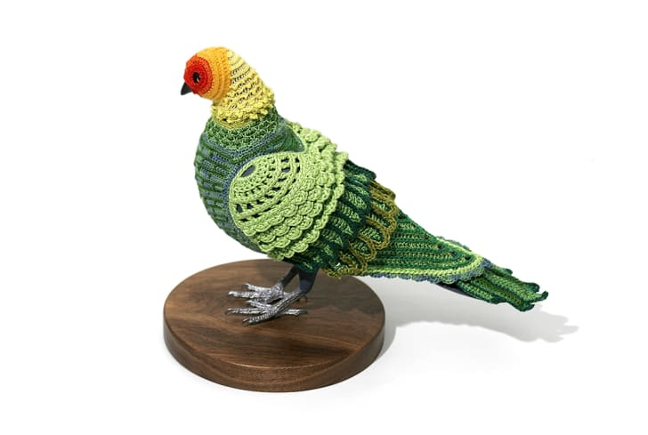 A a green and yellow crocheted costume makes a pigeon look like a Carolina parakeet.