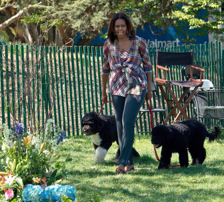 Michelle Obama walks dogs Bo and Sunny
