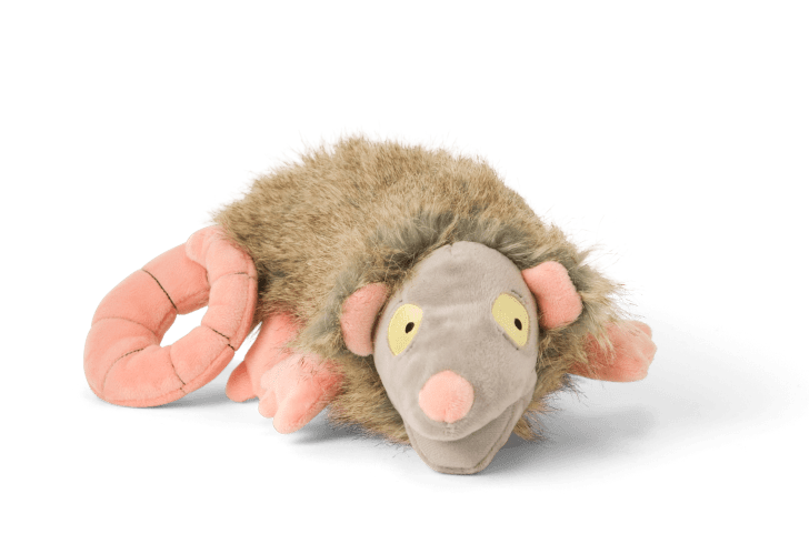 Play-Actin Possum