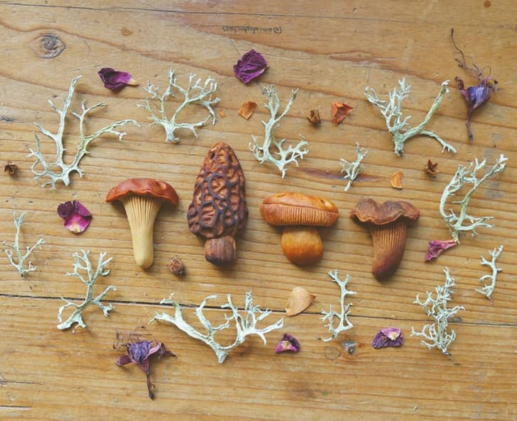 Wooden carvings of mushrooms laid out on a table.