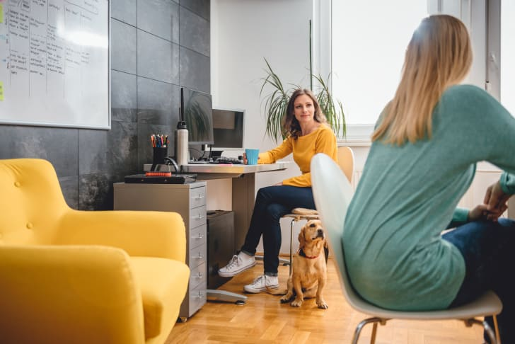 Two women talking in office while a dog sits near a desk.