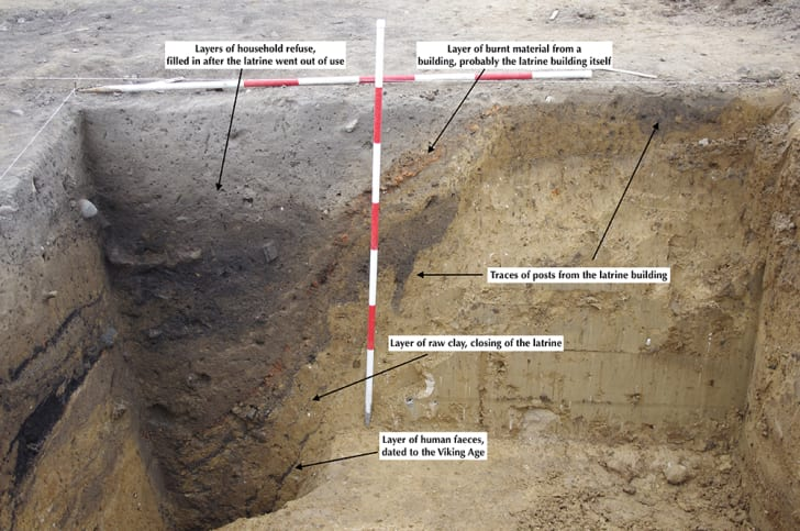 A dug-out pit that could be Denmark's oldest toilet showing dark spots of feces