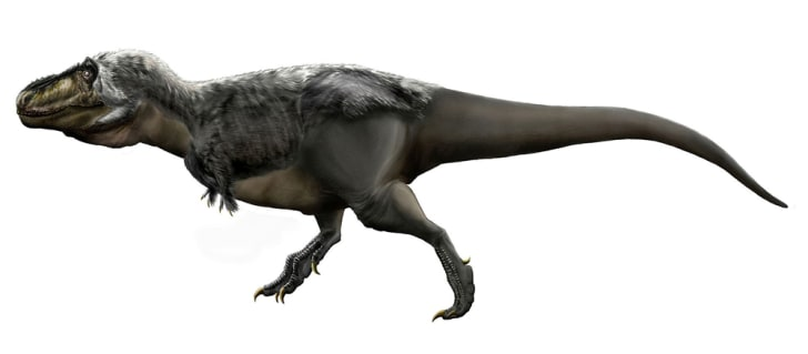 A feathered version of a T. Rex.