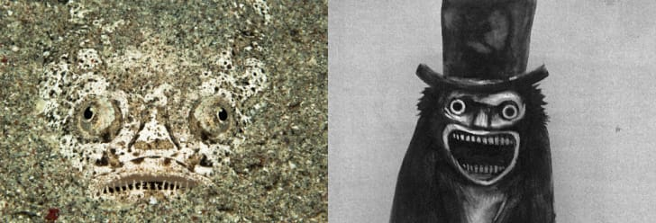 A babadook and a stargazer fish side by side.