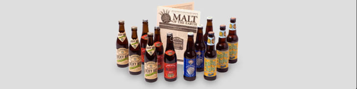 Collection of craft beer bottles.