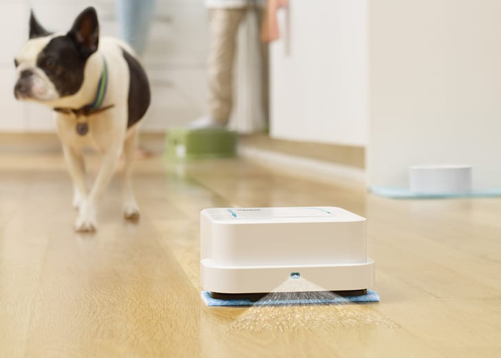 A Braava jet mops a hardwood floor while a dog looks on.