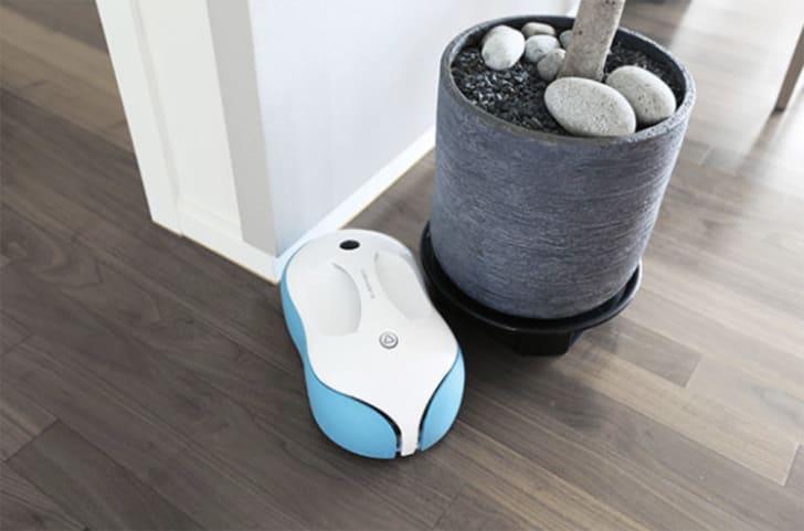 A robot mop navigates around a planter in a living room.
