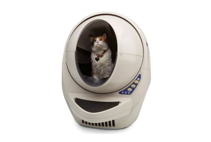 A cat sits inside the mouth of the Litter-Robot.