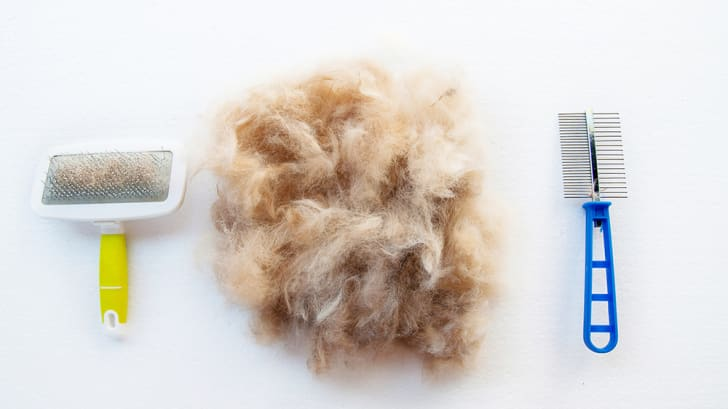 A pile of pet hair in between two grooming combs.