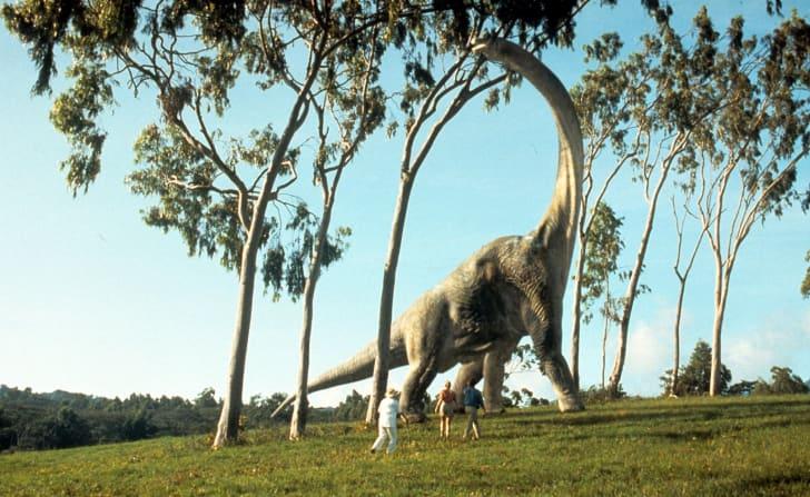 A Brachiosaurus in Jurassic Park.
