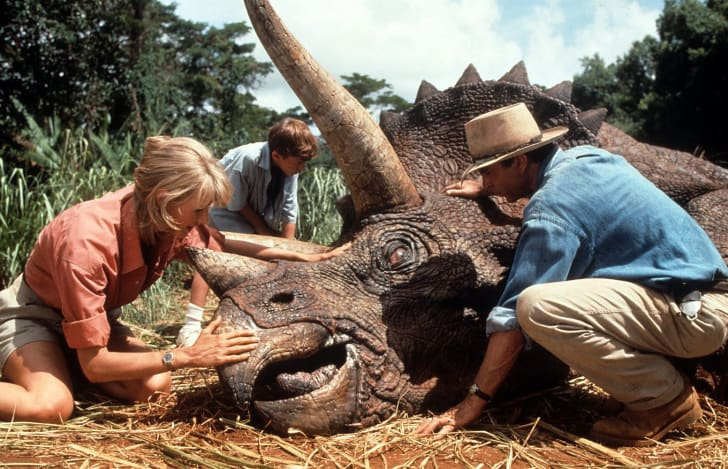 A Triceratops in Jurassic Park.