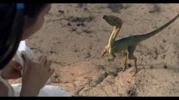 A Compsognathus in Jurassic Park.