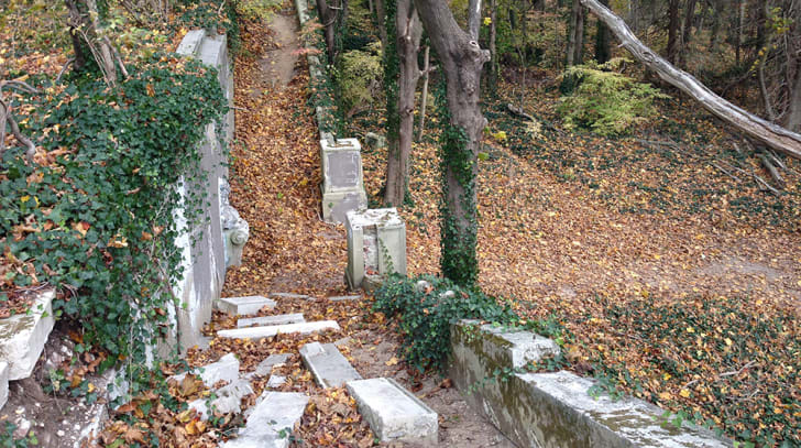 A photograph of a staircase in the ruined former estate of King Zog I of Albania
