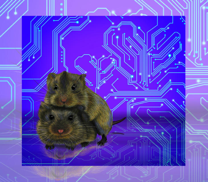 Illustration of two prairie voles huddling over a backdrop of computer circuits.